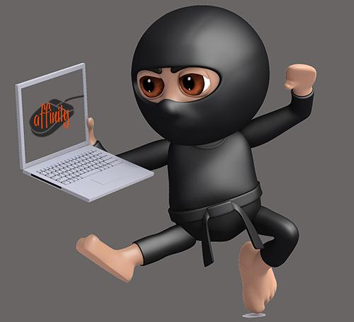 it-ninja